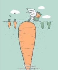 你永远不知道下一个萝卜有多大